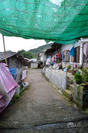 Thailand_ChiangMai_Doi_Pui_Hmong_village_forweb